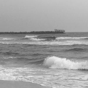 The beach @ St. Andrews SP
