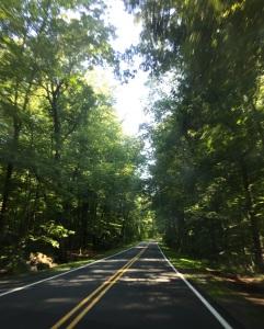 Road near French Creek SP
